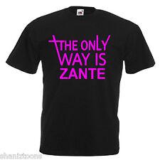 Zante Adults Mens T Shirt 12 Colours  Size S - 3XL