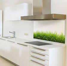Spritzschutzwand aus Glas, Motiv Gras, für Ihre Küche oder als Bild