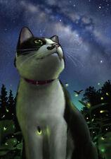 Evening Fireflies and cats Garden Flag House Decor Waterproof Yard Banner