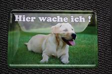 Hier wache ich Blechschild 20x30 cm Golden Retriever Warnschild Hund Dog Schild