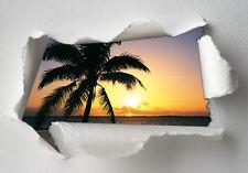 Sticker Trompe l'oeil Palmier réf 052