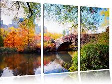Brücke im Central Park 3-Teiler Leinwandbild Wanddeko Kunstdruck