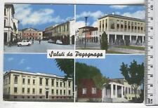 Cartolina Lombardia - Pegognaga Immagini varie- MN 3454