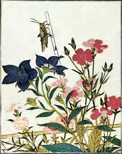 Vintage Japan poster.Flowers.Asian Room Art Decor.House Interior design.479