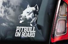 Pitbull on Board - Car Window Sticker - Pit Bull Terrier Dog Sign Decal - V02