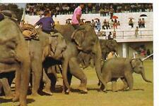 Elephant Roundup Surin Province,Bangkok,Thailand 1988