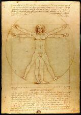 Leonardo da Vinci Human Proportions Vitruvian Man Vintage Art Print (d9000)