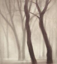LANDSCAPE TREES ART PRINT Forest III by Gretchen Hess *