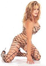 Sheer Nude + Black Spider Web Nylon Body Stocking Sexy Designer Lingerie P1148