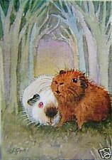 ACEO Limited Edition cobaye Imprimer de peinture originale par Suzanne Le Good