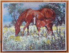 Alu-Bild Pferde Fohlen, Country Western Reiter Pferd, Cowboy Deko, 16x21 Alubild