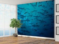 Hammerhead Sharks wildlife photo Wallpaper wall mural (9938862) Underwater