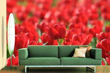Papel Pintado Mural De Vellón Campo De Tulipán Rojo 2 Paisaje Fondo De Pantalla