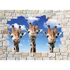 Stickers mural mur de pierre Girafes 8511