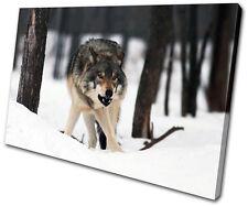 Animals White Wolf Wild SINGLE TOILE murale ART Photo Print