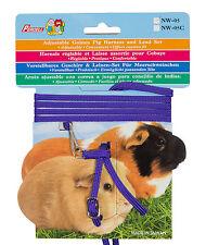 Adjustable Guinea Pig Harness