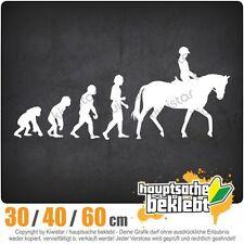 Evolution Pferdesport chf0792  in 3 Größen JDM  Heckscheibe Aufkleber