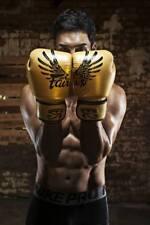 Genuine Fairtex New Limited Edition Falcon Boxing Gloves Genuine Leather
