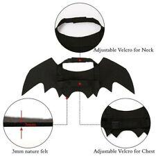 Cane Gatto Cosplay Abbigliamento Costume Nero Bat Ali Halloween Festa Pet Regali