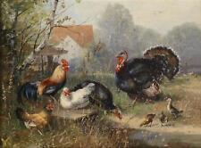 Julius Scheuerer  Poultry cock hen chicks  Giclee Canvas Print