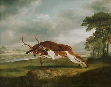 George Stubbs-hound qui se répand un élévage vintage fine art print