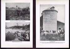 Silo-Cows-Potato Digger-Harvester-Groundnuts Farm 1918