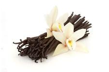 Ambrosial Vanilla Essential Oil Vanilla planifolia 100% Pure Natural