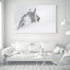 Horse Animal Silk Canvas Poster Art Fabric Painting Wall Decor A110 Unframerd