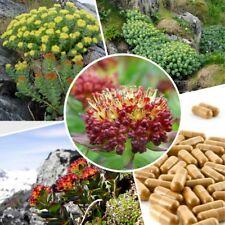 Extract Powder 14:1 WILD Siberian Rhodiola Rosea Root  30-1200 Caps 100% Natural