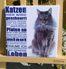 Dekofliese Wandbild Bildfliese Katze Spruch (100DP) Geschenkidee Fliese