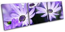 Flowers BOTANICAL Floral TREBLE TOILE murale ART Photo Print