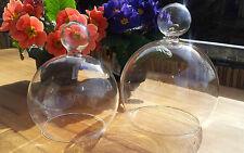 Glashaube Cloche Kugelrund Haube Glasdom Glaskuppel Glassturz Glasglocke