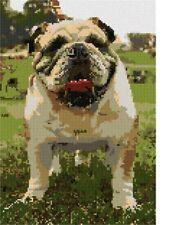 English Bulldog Needlepoint Kit or Canvas (Dog/Animal)