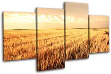 Corn Field Landscapes MULTI DOEK WALL ART foto afdrukken