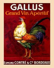 Bar Rooster Gallus Grand Vin Aperitif Bordeaux Wine 16X20 Vintage Poster FREE SH