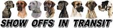 GREAT DANE Dog Show Off Car Sticker by Starprint