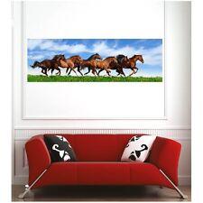 poster poster cavalli al galoppo 66901486 Art déco Adesivi