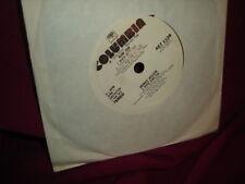 Dennis Wilson River Song (Beach Boys) PROMO Vinyl 45