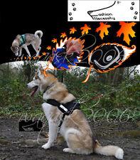 BN Dog Harness, S, M, L, XL padded extra Big large medium small heavy duty husky