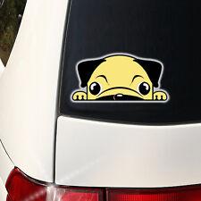 Pug Peeking Decal - Pug Mom  Full Color Indoor / Outdoor -  I love my Pug 7.5 in