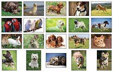 100 500 1000 Tier-Postkarten Tierpostkarten Hunde Katzen Vögel Pferde 20 Motive