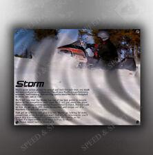 VINTAGE MASSEY FERGUSON 1977 STORM SNOWMOBILE BANNER
