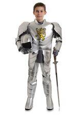 Child Knight Costume