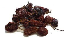 Habanero Chilli Pepper - CHILLIESontheWEB