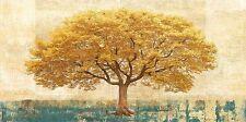 LEONARDO BACCI: dorato rovere barella-immagine Schermo Albero Giallo rovere