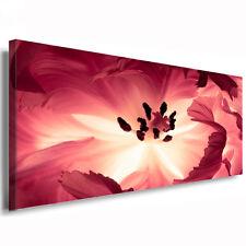 Leinwandbild Tulpen Wandbild 200cm max Panorama Bild xxl Kunstdruck Macro Flower