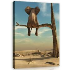 Wandbild  Leinwandbild Kunstdruck 1D20332616 Elefant auf dem Baum #GESCHENK GRAT