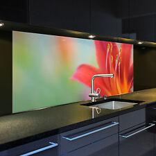 Digitaldruck auf Glas 1032-1-GB Motiv Taglilie für Ihre Küche oder als Bild