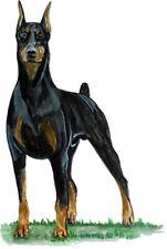 Doberman Pinscher Lover Large Breed Dog Vinyl Decal - Car Home Truck Suv Boat Rv