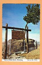 Tree in Solid Rock - Wyoming Unused postcard between Laramie and Cheyenne